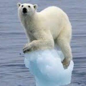 Наблюдения и мнения очевидцев и ученых о невероятно стремительном таянии ледников
